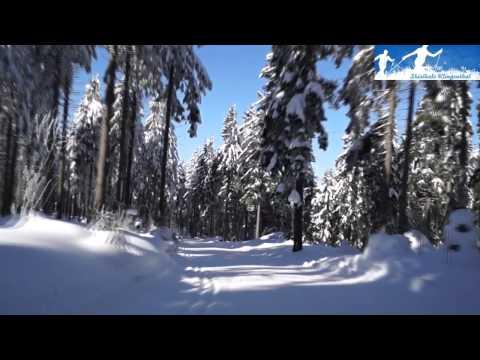 Langlauf: Abfahrt auf der Kammloipe in Klingenthal